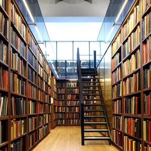Библиотеки Электростали