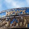 Зоопарки в Электростале